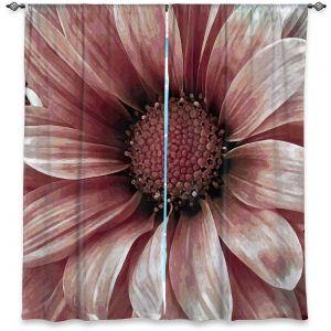 Decorative Window Treatments | Angelina Vick - Daisy Blush Pink | Flower close up