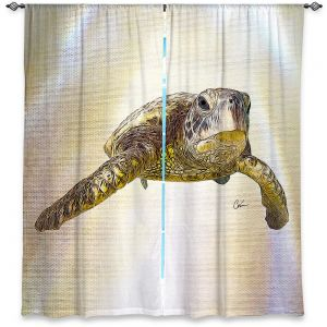 Decorative Window Treatments | Corina Bakke - Sea Turtle 6 | water nature ocean