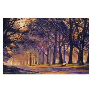 Decorative Floor Covering Mats | David Lloyd Glover - Winter Night Central Park | tree snow path