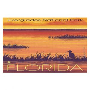 Decorative Floor Coverings | Lantern Press - Everglades National Park Florida