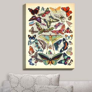 Decorative Canvas Wall Art   Madame Memento - Butterflies Collection