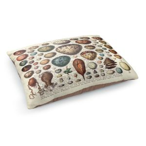 Decorative Dog Pet Beds | Madame Memento - Eggs Collection | Nature shell books