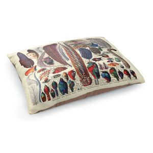 Decorative Dog Pet Beds | Madame Memento - Feather Collection | Bird nature script book