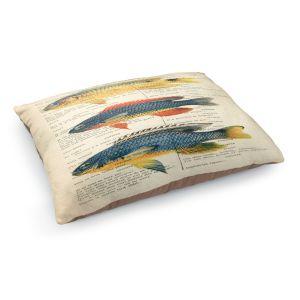 Decorative Dog Pet Beds | Madame Memento - Fish | nature ocean print text script book