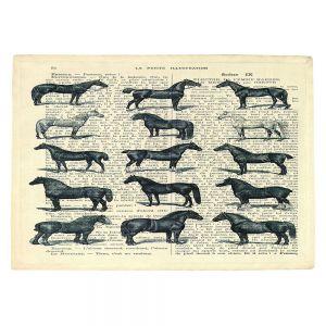 Countertop Place Mats | Madame Memento - Horse Breeds