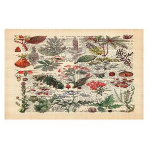 Decorative Floor Covering Mats | Madame Memento - Plant Chart | nature earth flower