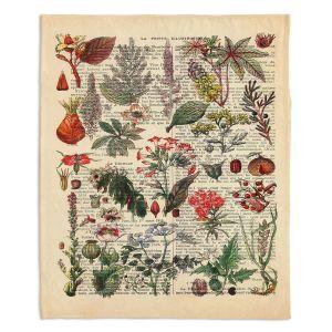 Decorative Fleece Throw Blankets | Madame Memento - Plant Chart | nature earth flower