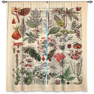 Decorative Window Treatments | Madame Memento - Plant Chart | nature earth flower