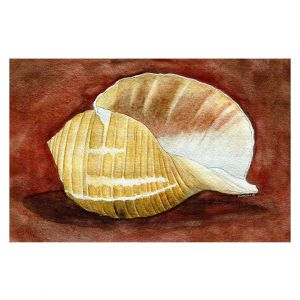 Decorative Floor Covering Mats | Marley Ungaro - Giant Tun | Ocean seashell still life nature