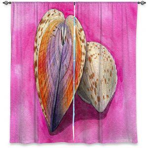 Decorative Window Treatments | Marley Ungaro - Heart Cockle | Ocean seashell still life nature