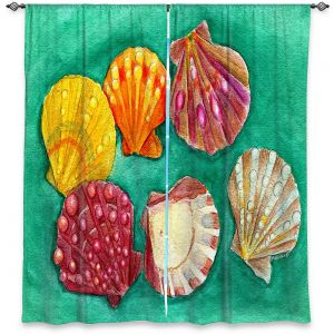Decorative Window Treatments | Marley Ungaro - Lionpaw Scallops | Ocean seashell still life nature