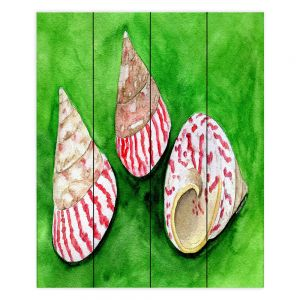 Decorative Wood Plank Wall Art | Marley Ungaro - Peppermint Trochus | Ocean seashell still life nature