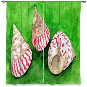 Decorative Window Treatments | Marley Ungaro - Peppermint Trochus | Ocean seashell still life nature