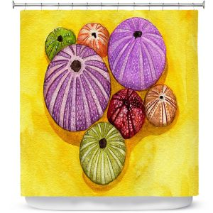 Premium Shower Curtains | Marley Ungaro - Seaurchin Shells | Ocean seashell still life nature