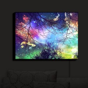 Unique Illuminated Wall Art 20 x 16 from DiaNoche Designs by Sylvia Cook - Look to the Stars