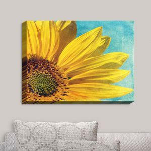 Decorative Canvas Wall Art | Sylvia Cook - Pure Sunshine