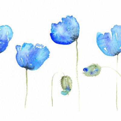 DiaNoche Designs Artist | Amanda Hawkins - Azure Poppies