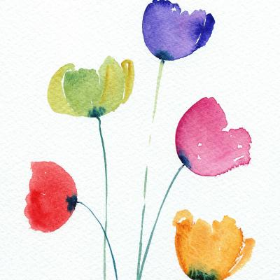 DiaNoche Designs Artist | Amanda Hawkins - Colourful Poppies