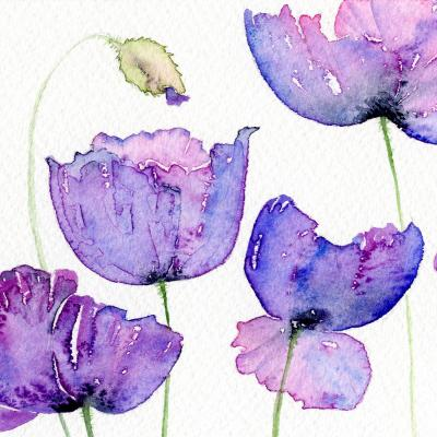 DiaNoche Designs Artist | Amanda Hawkins - Cornish Poppies