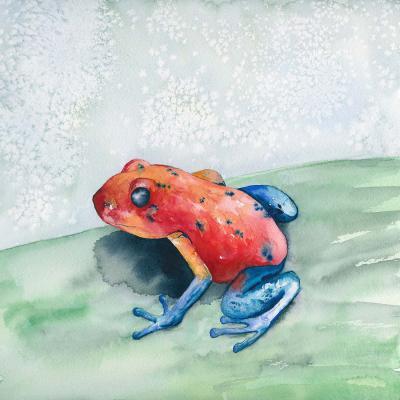 DiaNoche Designs Artist | Brazen Design Studio - Blue Jean Frog