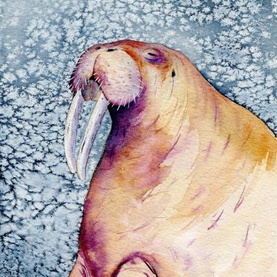 DiaNoche Designs Artist | Brazen Design Studio - Chubs Walrus