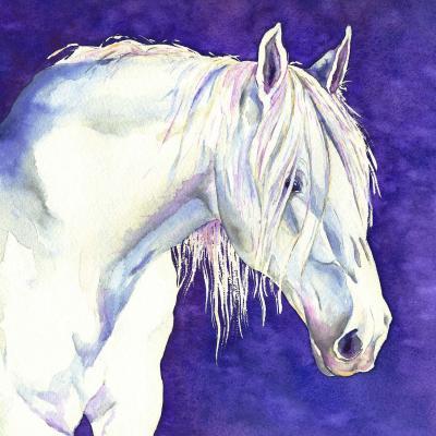 DiaNoche Designs Artist | Brazen Design Studio - Shay Horse