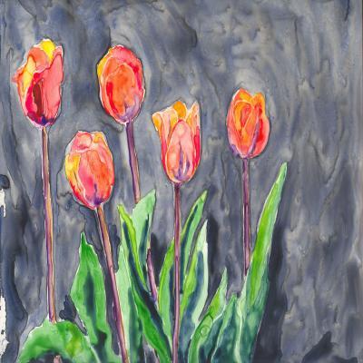 DiaNoche Designs Artist | Brazen Design Studio - Tulips