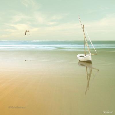 DiaNoche Designs Artist | Carlos Casamayor - Soft Sunrise On the Beach I