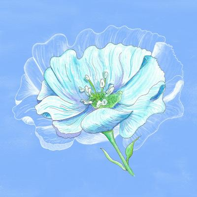 DiaNoche Designs Artist | Catherine Holcombe - Blue Flower
