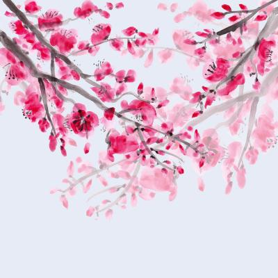 DiaNoche Designs Artist | Catherine Holcombe - Cherry Blossom