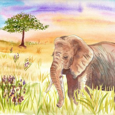 DiaNoche Designs Artist | Catherine Holcombe - Ellie Elephant