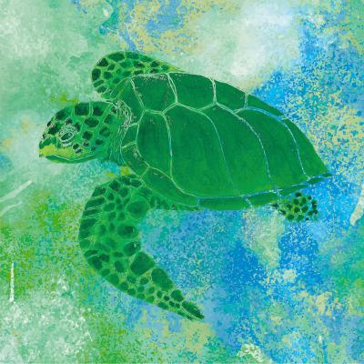DiaNoche Designs Artist | Catherine Holcombe - Kelp Sea Turtle