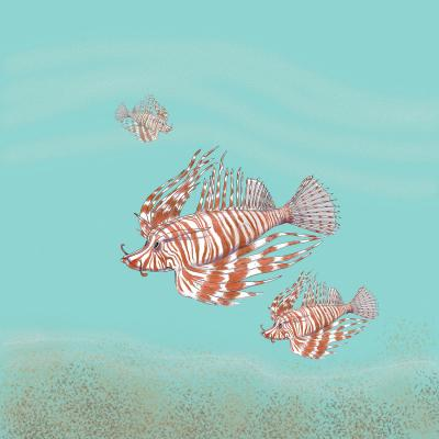 DiaNoche Designs Artist | Catherine Holcombe - Lion Fish Family