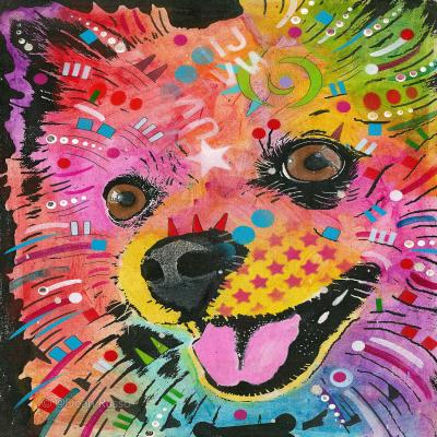 DiaNoche Designs Artist | Dean Russo - American Eskimo Dog 15