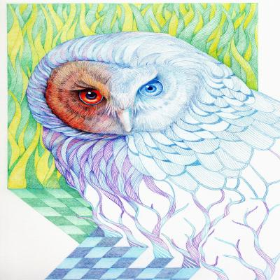 DiaNoche Designs Artist | Gerry Segismundo - Chess Owl