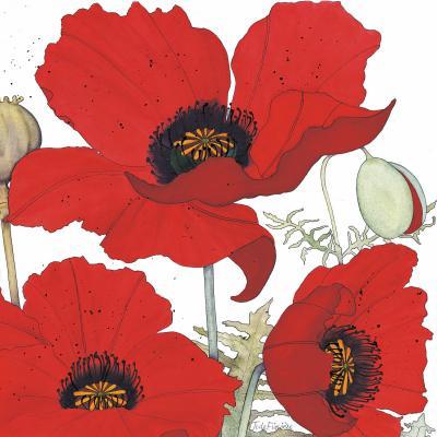 DiaNoche Designs Artist | Judith Figuiere - 3 Red Poppies