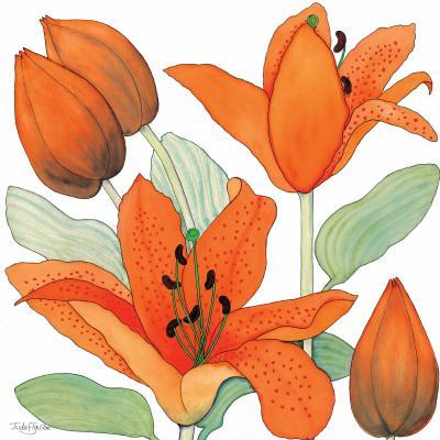 DiaNoche Designs Artist | Judith Figuiere - Orange Lillies