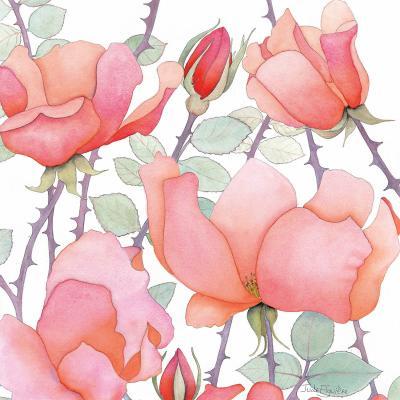 DiaNoche Designs Artist | Judith Figuiere - Rosa
