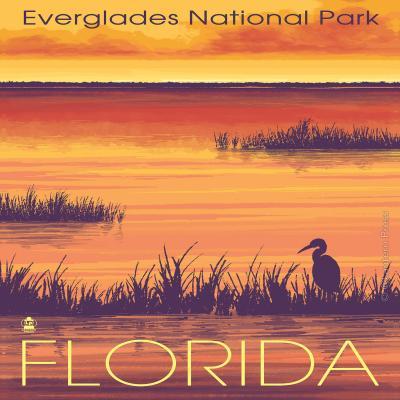 DiaNoche Designs Artist | Lantern Press - Everglades National Park Florida