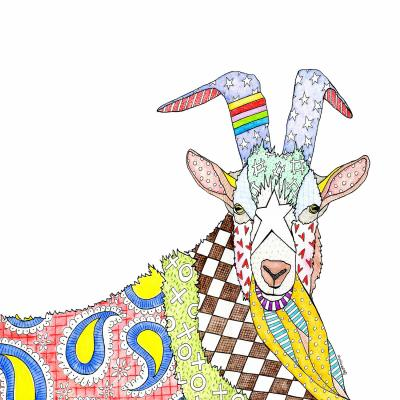 DiaNoche Designs Artist | Marley Ungaro - Billygoat White