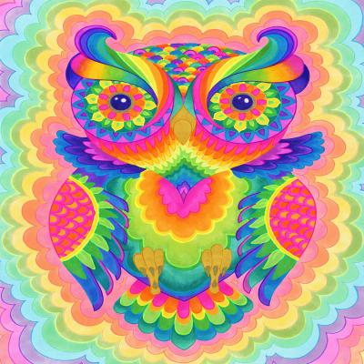 DiaNoche Designs Artist | Rachel Brown - Cosmic Owl