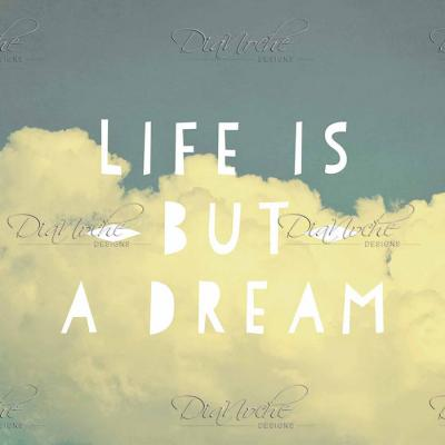 DiaNoche Designs Artist | Rachel Burbee - Life is But a Dream