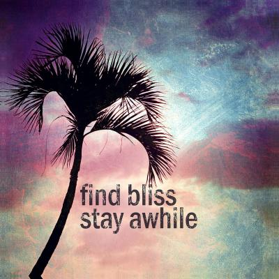 DiaNoche Designs Artist | Sylvia Cook - Find Bliss I