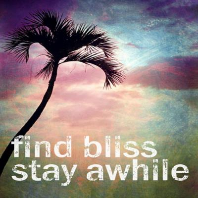 DiaNoche Designs Artist | Sylvia Cook - Find Bliss II