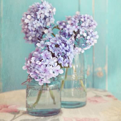 DiaNoche Designs Artist | Sylvia Cook - Hydrangeas in Mason Jars